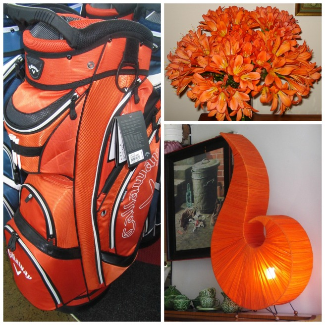 The Colour Orange -golf bag, Clivia flowers, Retro lamp