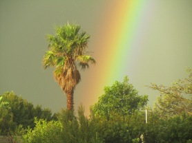 Rainbow in Cape Town